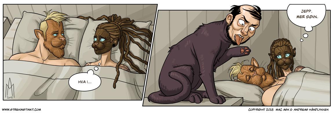 Vi sender beklagelser til vår katt.